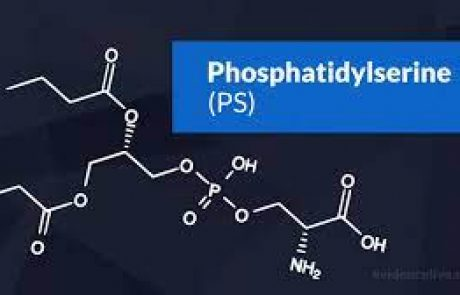 פוספטידיל סרין (Phosphatidylserine) מהו