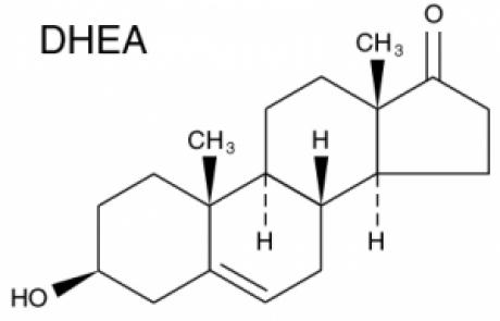 DHEA – דהידרו-אפיאנדרוסטרון – Dehydroepiandrosterone