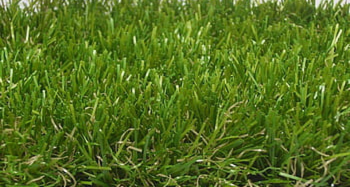 דשא סינטטי – מדריך לדשא סינטטי