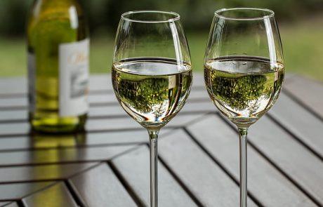 יין – מידע על יין – Wine